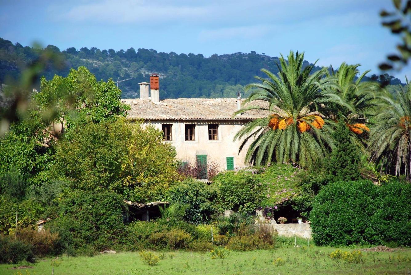 Antigua possesió en la zona de Pollensa rodeada de olivos y viñedos