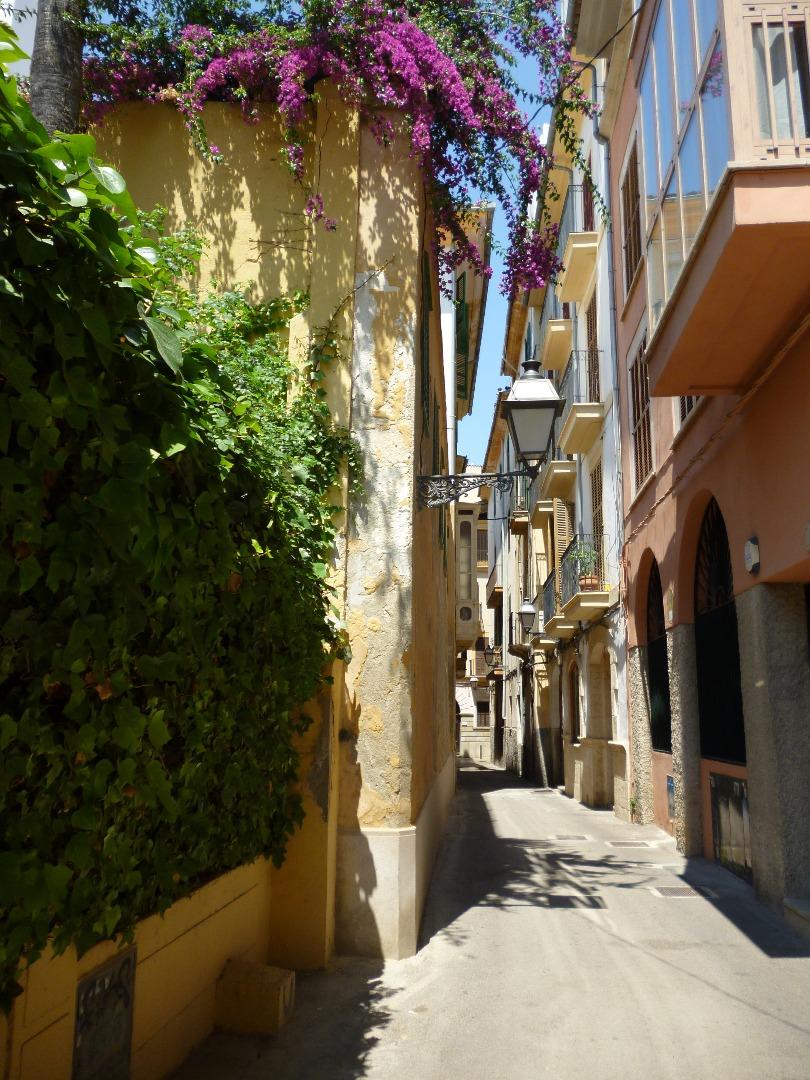 Piso duplex en planta entresuelo y semisòtano en casa señorial tradicional mallorquina. Pleno corazón del casco antiguo de Palma.