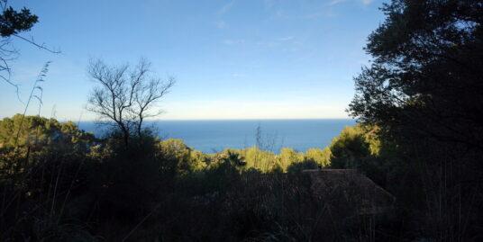 Terreno con excelentes vistas al mar en la zona de Estellencs